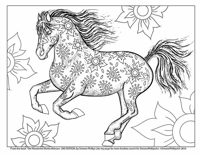 free horse coloring page simonephillipsart wwwcoloring for adultscom - Horse Coloring Pages For Adults