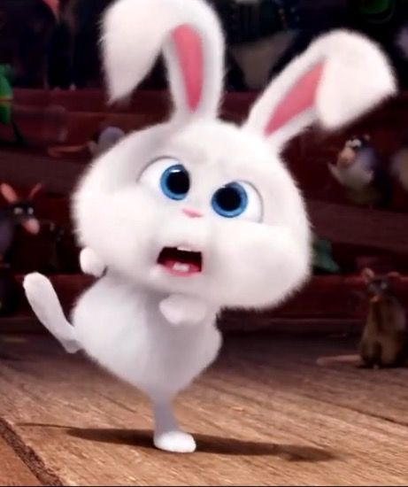Cute Cartoon Bunny Wallpapers Butterfly Spirit ♡ I M His Only Rabbit ♡ En 2019 Cute