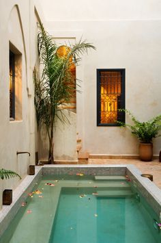 Moroccan plunge pool in a summer house in Marrakesh.