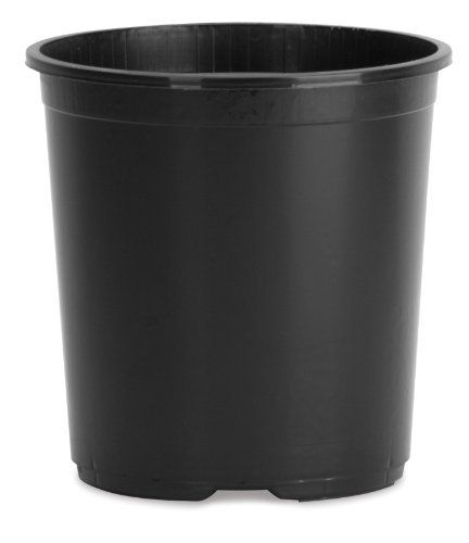 Planters Pride Nsr003g0 3 Gallon Black Nursery Planter By