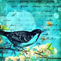 If you want to know more about lyric poems or to get lyric poem examples, then you will get a great mini-tutorial here!    So what is a lyric poem?...