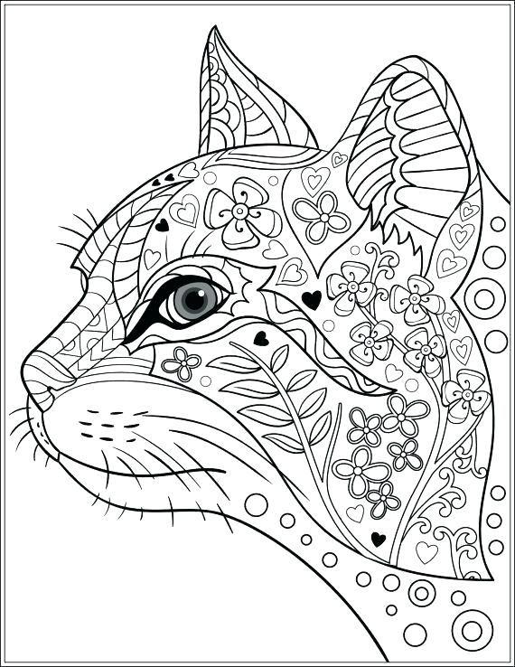Pin De Secil Erturk Em Kedi Com Imagens Desenhos Para Colorir