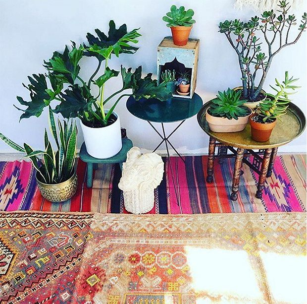 vintage boho rugs and plants