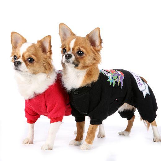 Costumas pentru Catei, model Fetite --> https://kingmaru.ro/…/146/Costumas-calduros-pentru-catei-fe… Costumas pentru Catei, model Baieti --> https://kingmaru.ro/…/119/Costumas-calduros-pentru-catei-ba…  Si nu uita! Transportul este GRATUIT pentru comenzile de peste 300 lei  #hainecaini #imbracamintecaini #accesoriicaini #kingmaru