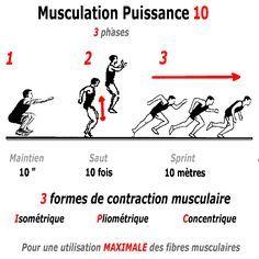 les exercices du programme musculation puissance 10