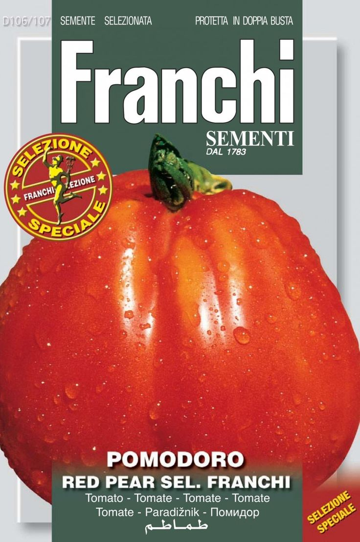 Tomato Red Pear (106-107) - Seeds from Italy