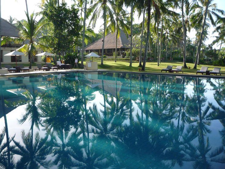 Palm reflections, early morning, Candi Dassa, Bali.