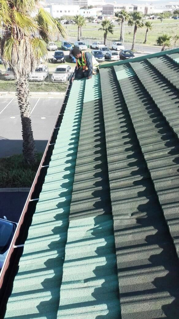 Paramount Roofing Specialises In Residential And Factory Roofs Roofing Roof Roofer