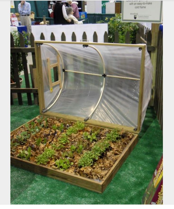 Hinged hoop cold frame