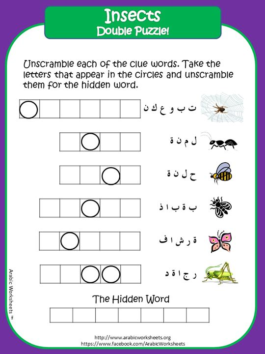 Learn insects names in Arabic Double Puzzle http://www.facebook.com/ArabicWorksheets http://www.arabicworksheets.org