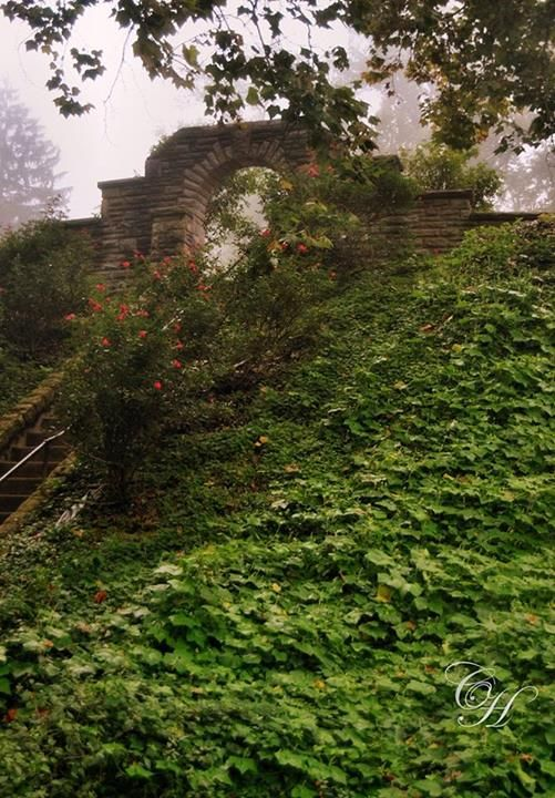 Ritter Park - stairs to the rose garden - Huntington, WV
