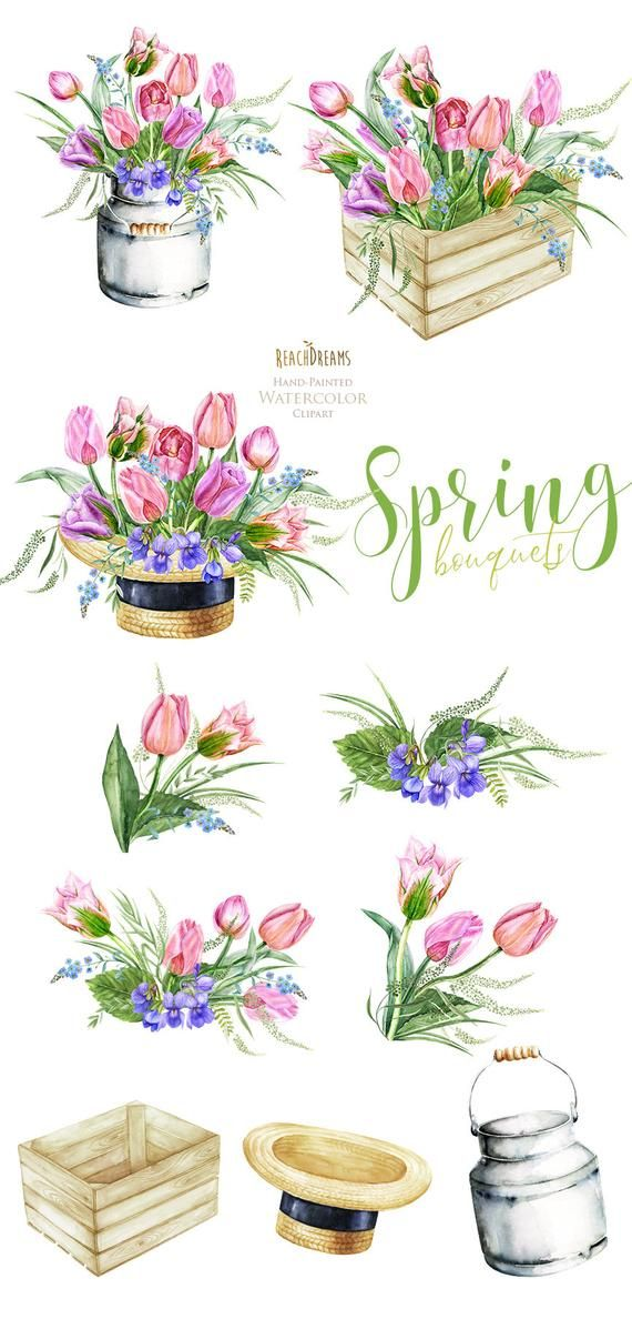 Watercolor Floral Clipart Tulips Bouquets Frame Spring