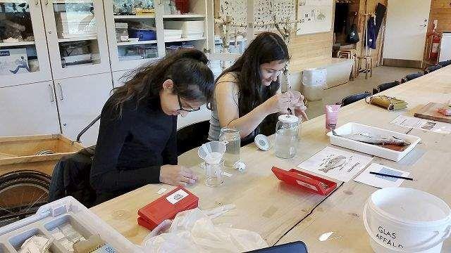 Naturskolen hjalp to piger til toppræstation i naturfag