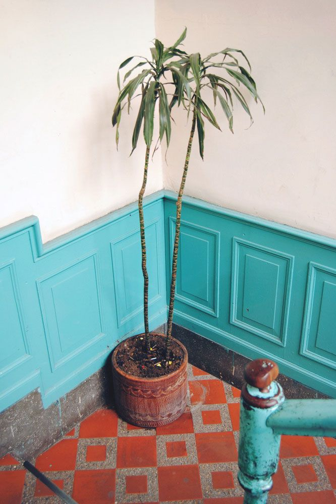 turquoise wainscoting