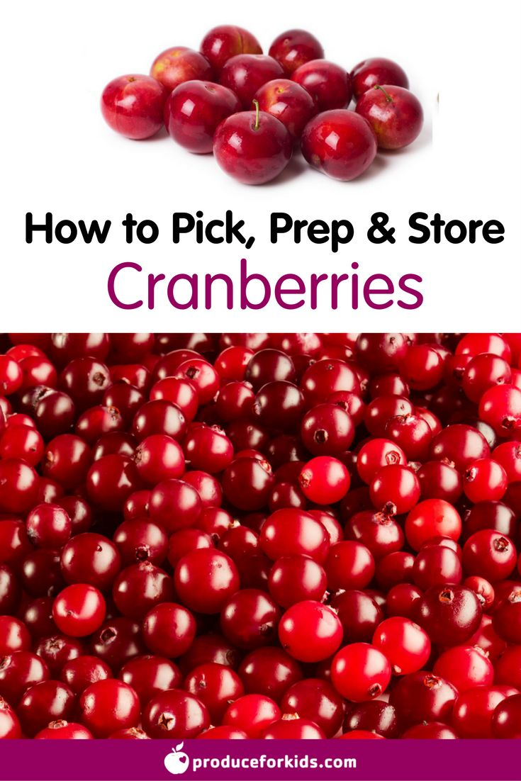 How to Pick, Prep & Store Cranberries + nutrition information, recipes, fun facts and more!