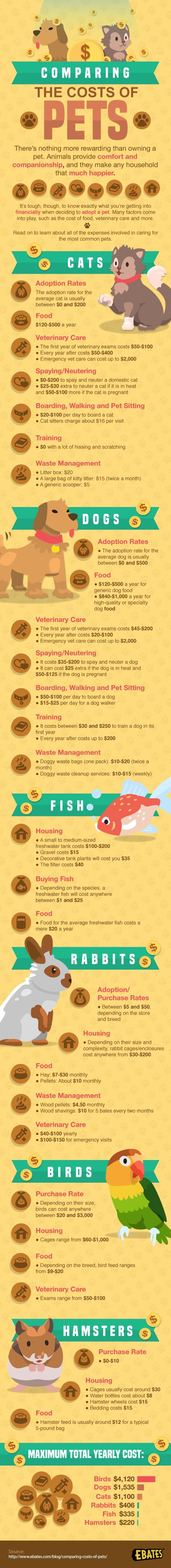 Comparing the cost of pets #infographic #Pets