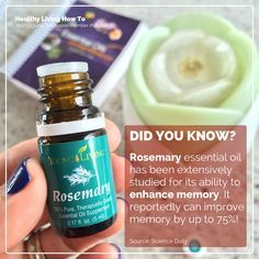 I could definitely use some memory enhancement... lol Rosemary Essential Oil | healthylivinghowto.com