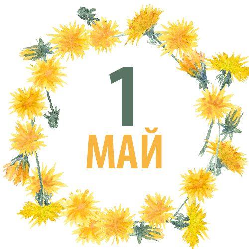 C праздником весны, мира и труда!!!💃🎉👯 Желаем всем прекрасных выходных!☀️🌷🌺  #1май #мир #труд #май #праздники #выходные #первомай #отдыхаемхорошо #регенбоген #regenbogen