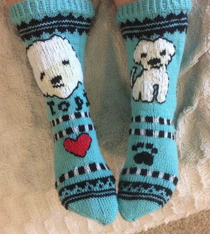 Bichon Frise - socks