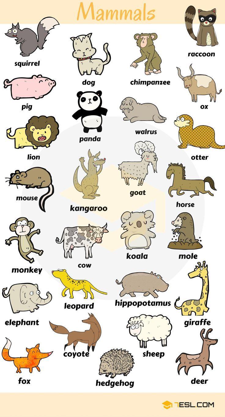 Liste Tiere