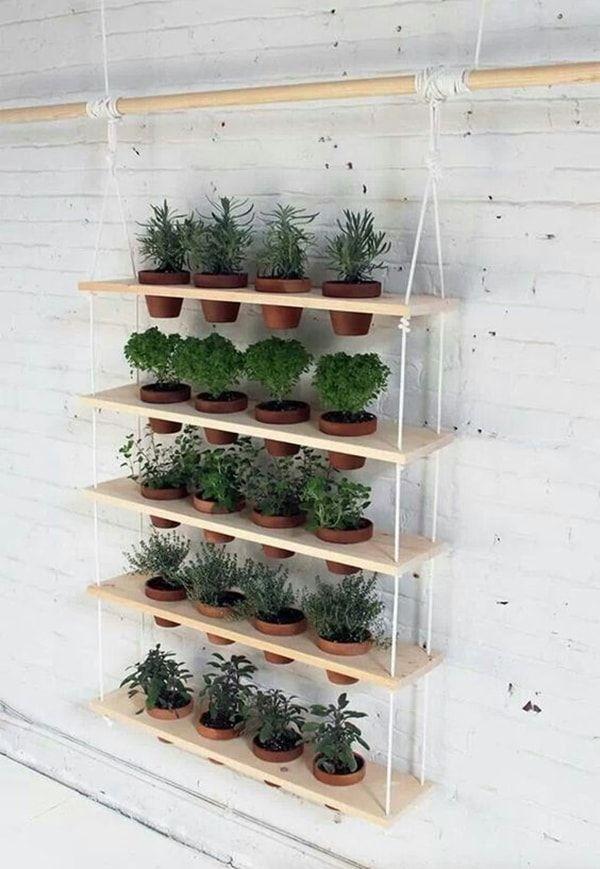 Crea tu propio jardín vertical