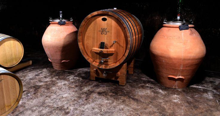 Vinification du Domaine Vico Collection  Vins de centre corse