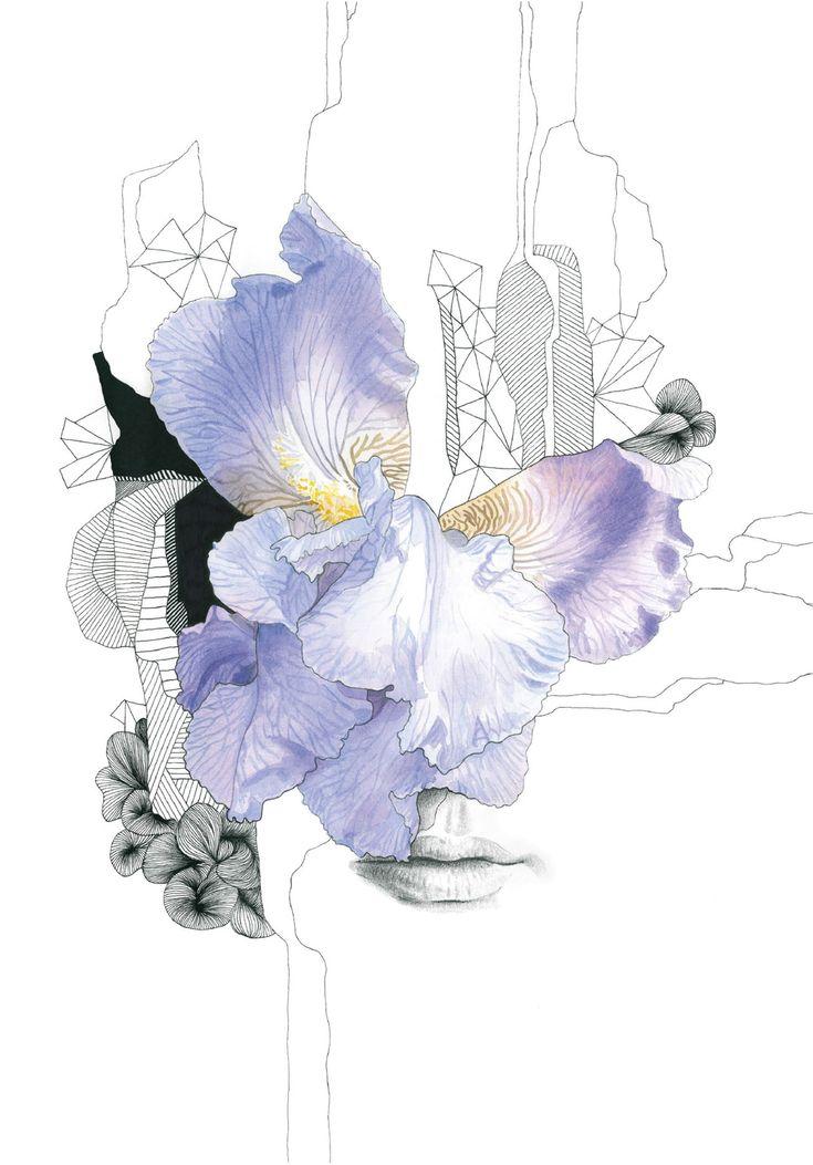 PRINT - Iris