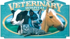 East Bundaberg Vet Hospital. Looking after your pets health when you need it most, Princess Street East Bundy.