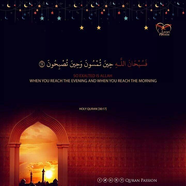 بعد صلاه التراويح يجي وقت التسبيح س ب ح ان الل ه و ب ح م د ه س ب ح ان الل ه ال ع ظ يم Prayer For The Day Holy Quran Quran