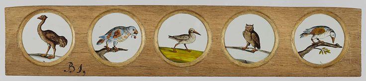 Vijf afbeeldingen van vogels, anoniem, c. 1700 - c. 1790