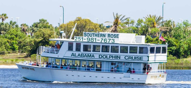 dolphin tours.  can bring cooler.  $20 2 hr sunset cruise in Orange Beach and Gulf Shores, AL