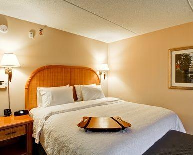 Hampton Inn & Suites by Hilton Guelph Hotel, Ontario, Canada - King Standard Bedroom