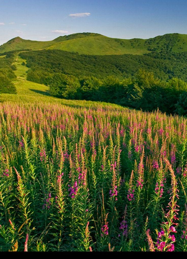 Bieszczady Mountains, Poland -  runs from the extreme south-east of Poland through Ukraine & Slovakia. photo by tomek trojnar