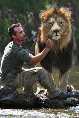 Kevin Richardson, zoologiste sud africain travaille en Afrique du Sud au contact des animaux de la savane, notamment des lions.
