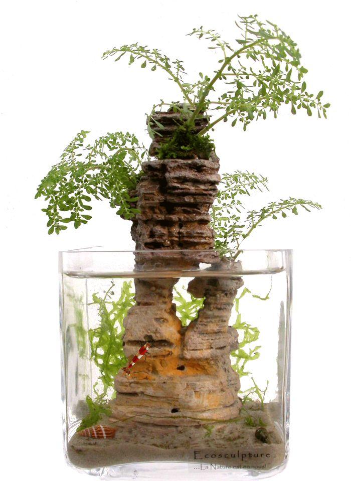 Les 25 meilleures id es de la cat gorie d corations d for Poisson decoration aquarium