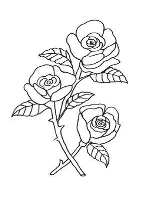 ausmalbild rosen zum ausmalen. #ausmalbilder   #