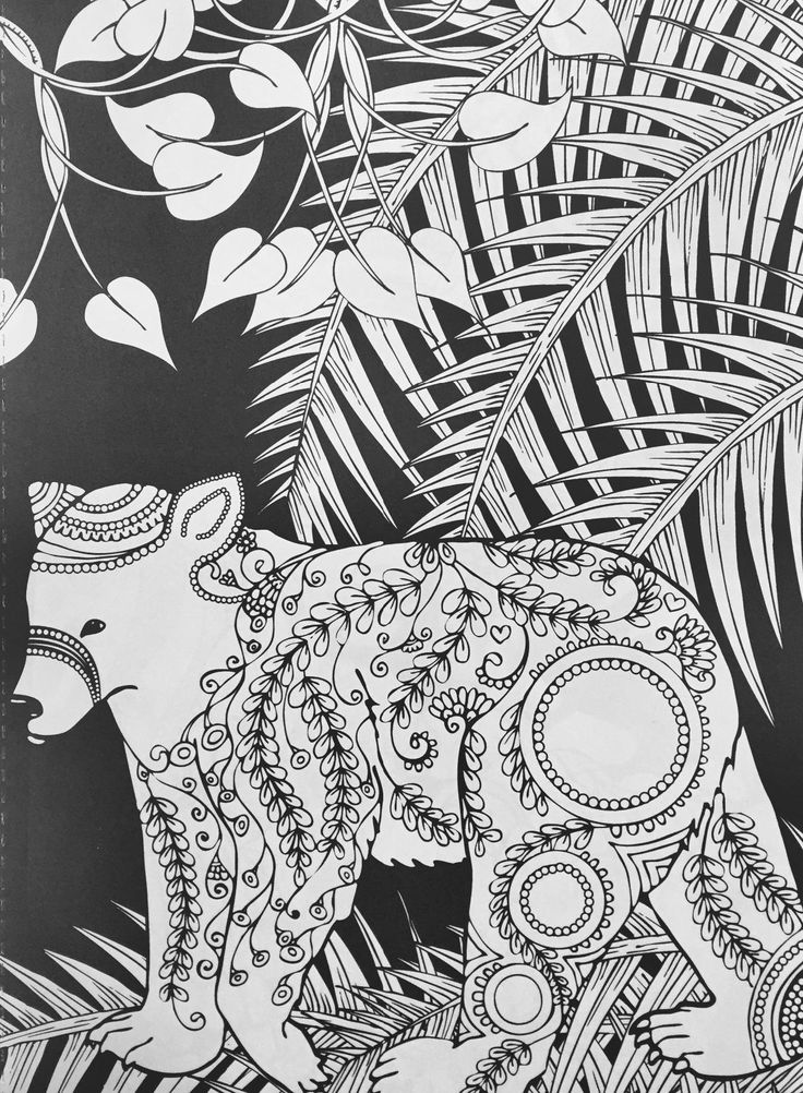 Adult Coloring Pages Books Animal Design Black Backgrounds Forests Amazons Bear Color