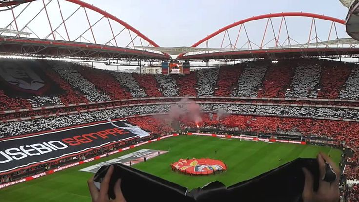 17 best images about benfica 1904 e pluribus unum on for Piso 0 estadio da luz