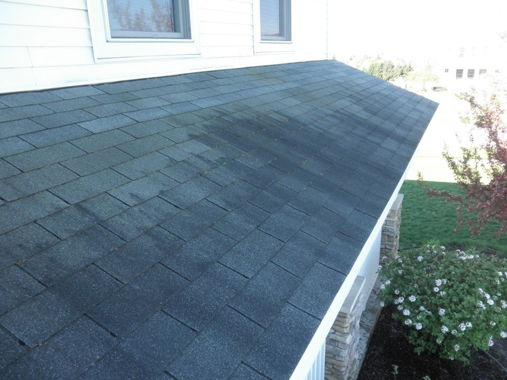 61 Best Roof Cleaning Images On Pinterest