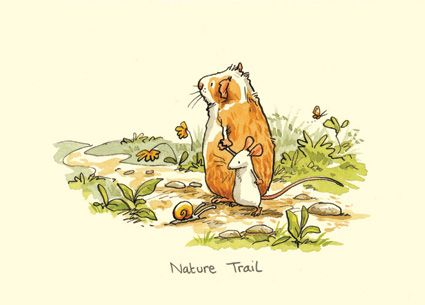 M146 NATURE TRAIL a Two Bad Mice card by Anita Jeram