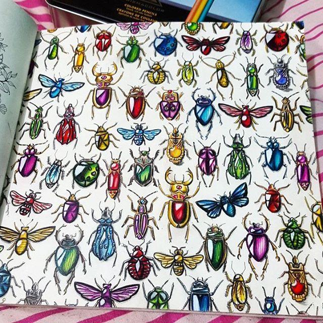 Instagram Post By Adelia D Anjou Adeliadanjou Adult ColoringColoring BooksColoring PagesJohanna BasfordSecret GardensWatercolor