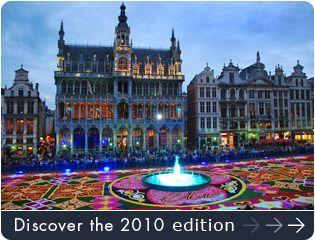 Flower Carpet - Brussels, BelgiumGiants Carpets, Carpets Flower, Brussels Belgium, Flower Carpets Th, Brussels Flower, Events Features, Carpets Celebrities, Biannual Flower, Carpets Design