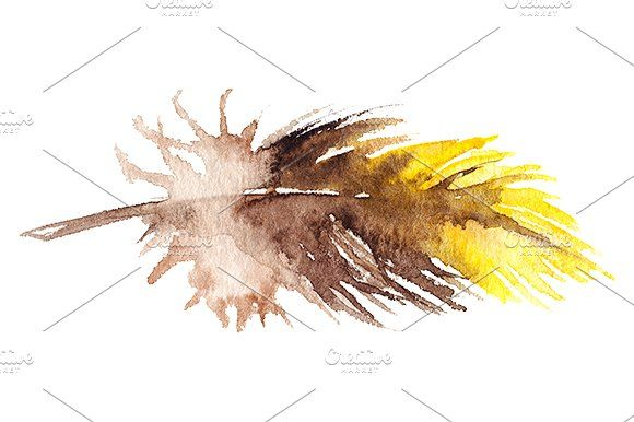 Watercolor yellow parrot feather by Art By Silmairel on @creativemarket