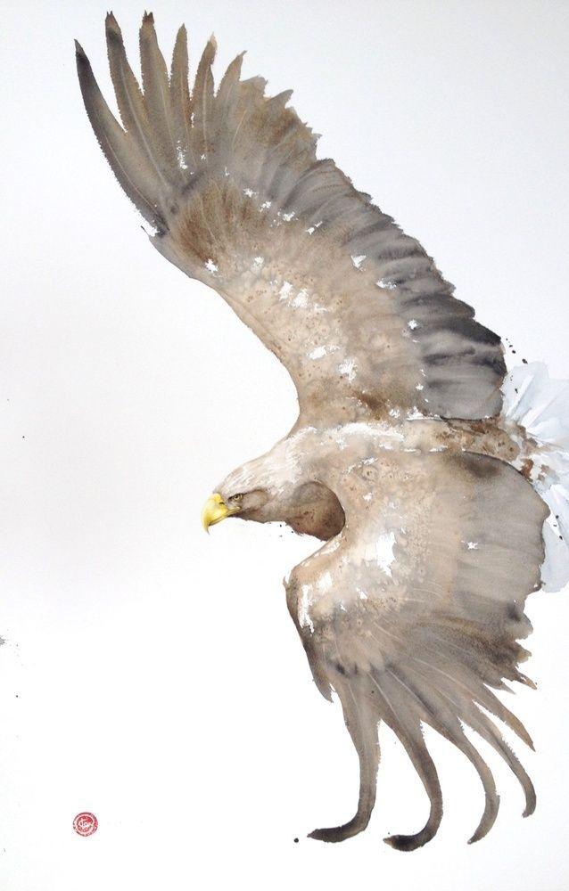 Karl Martens, White Tailed Eagle (Framed)   Cricket Fine Art