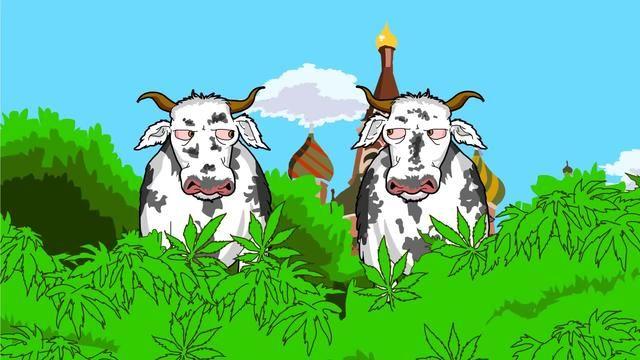 Conversa De Vacas Maconheiras Muito Boa Essa Piada Kkkkkk