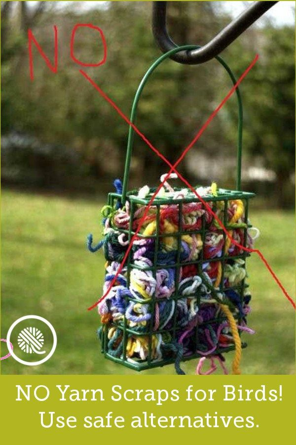 yarn clippings for birds - 600×900
