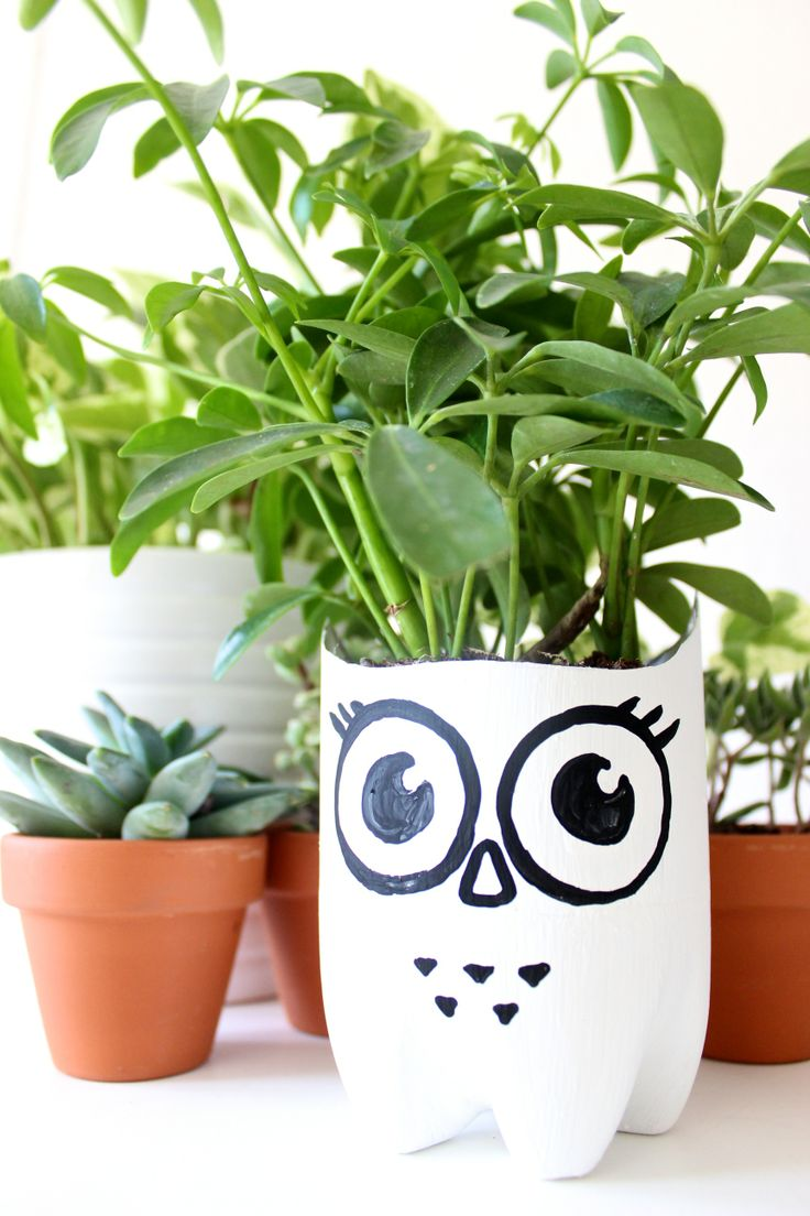 plastic bottle owl planter kid crafts pinterest