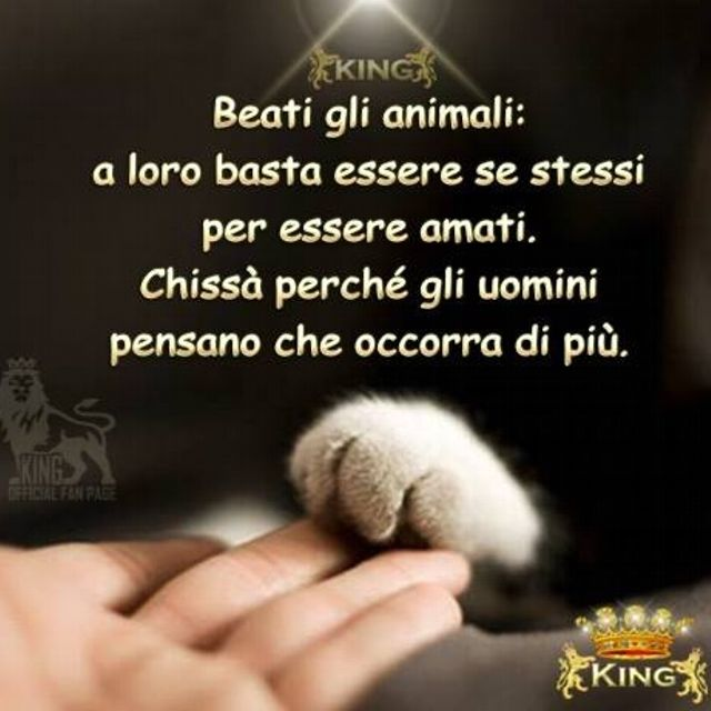 Beati gli animali...