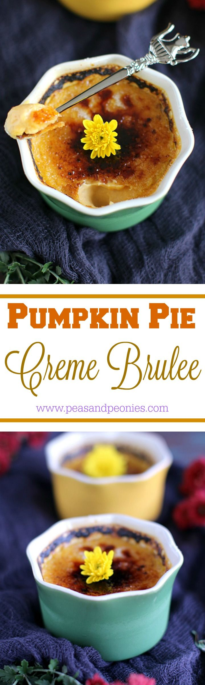 Pumpkin Pie Creme Brûlée - This pumpkin pie creme brulee is a French classic dessert transformed to sweeten your Thanksgiving table with its pumpkin flavor and crunchy top. Peas and Peonies