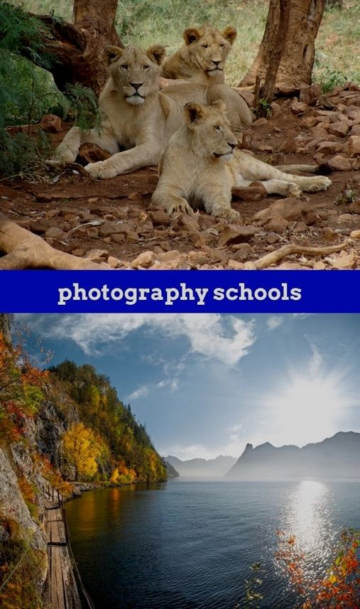Photography Schools302018102911541446 Cheap Photography